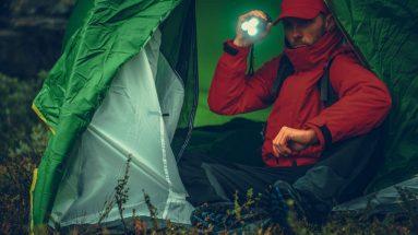 Wie kann man in der Wildnis überleben