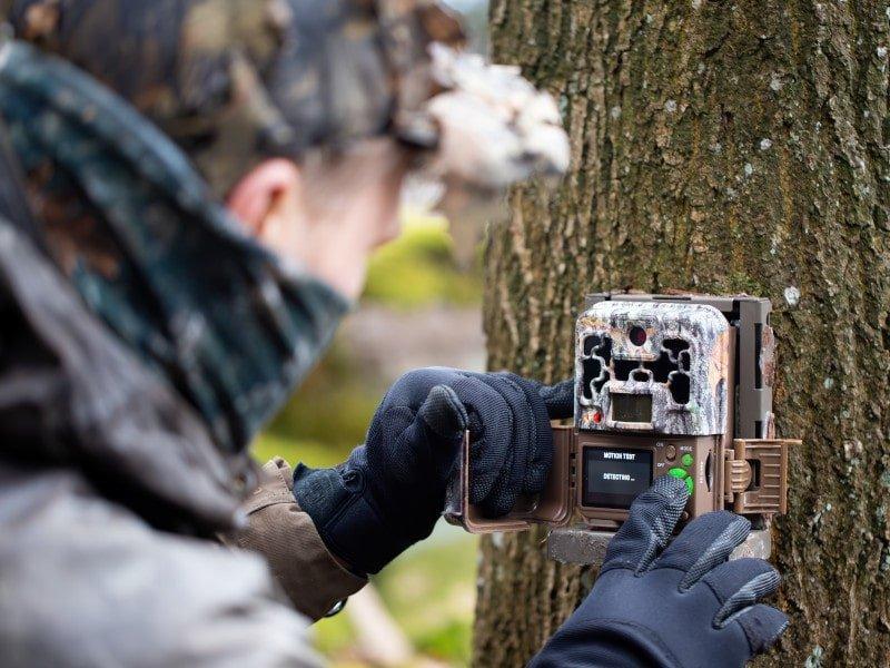 Wildtierkamera Test & Vergleich – großer Kaufratgeber